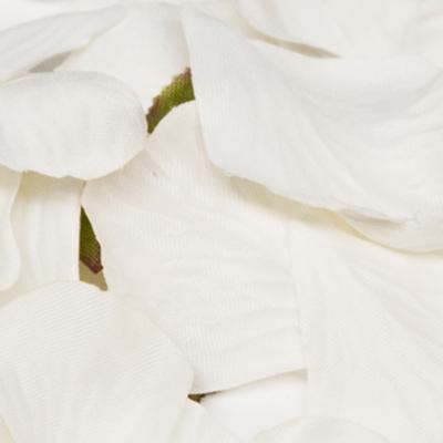 Eleganza Rose Petals - White 164pcs - Accessories