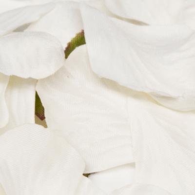 Eleganza Rose Petals - White 1000pcs - Accessories