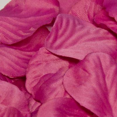 Eleganza Rose Petals - Fuchsia 164pcs - Accessories
