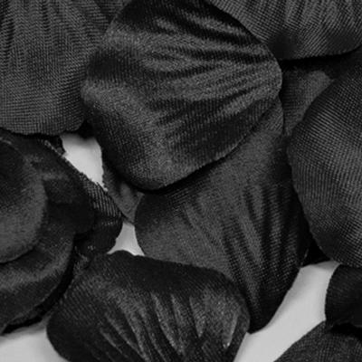 Eleganza Rose Petals - Black 164pcs - Accessories