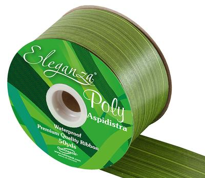 Eleganza Poly Ribbon Aspidistra 50mm x 50yds Spring Green - Ribbons