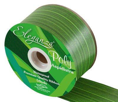Eleganza Poly Ribbon Aspidistra 50mm x 50yds Mint - Ribbons