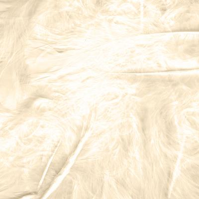 Eleganza Craft Marabout Feathers Mixed sizes 3inch-8inch 8g bag Ivory No.61 - Accessories
