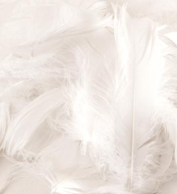 Eleganza Feathers Mixed sizes 3inch-5inch 50g bag White No.01 - Accessories