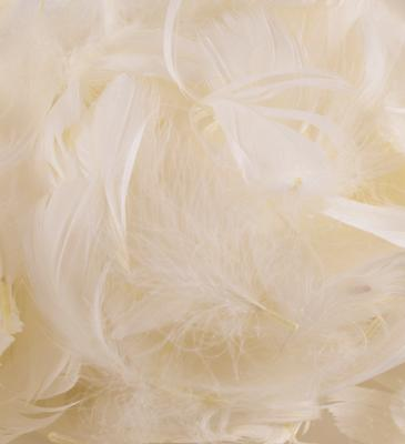 Eleganza Feathers Mixed sizes 3inch-5inch 50g bag Ivory No.61 - Accessories