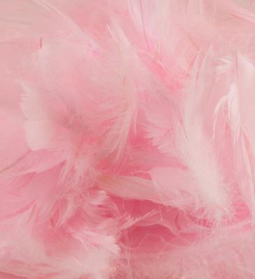Eleganza Feathers Mixed sizes 3inch-5inch 50g bag Lt. Pink No.21 - Accessories