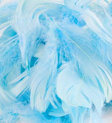 Eleganza Feathers Mixed sizes 3inch-5inch 50g bag Lt. Blue No.25 - Accessories