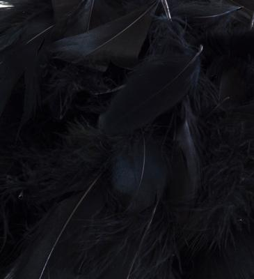 Eleganza Feathers Mixed sizes 3inch-5inch 50g bag Black No.20 - Accessories
