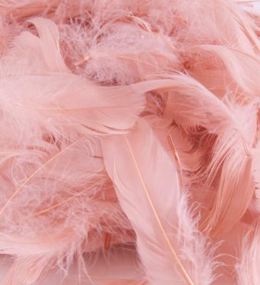 Eleganza Feathers Mixed sizes 3inch-5inch 50g bag Rose Gold No.87 - Accessories