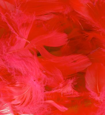Eleganza Feathers Mixed sizes 3inch-5inch 50g bag Red No.16 - Accessories