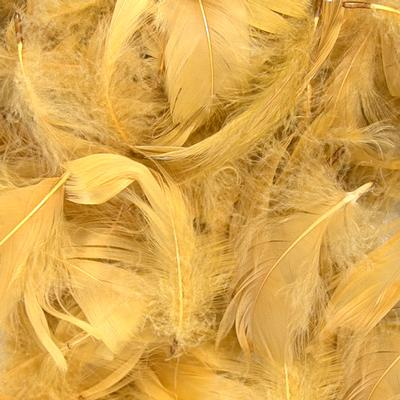 "Eleganza Feathers Mixed sizes 3""-5"" 50g bag Gold No.35 - Accessories"