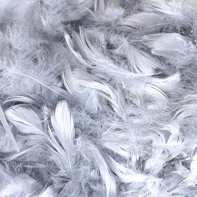 "Eleganza Feathers Mixed sizes 3""-5"" 50g bag Silver No.24 - Accessories"
