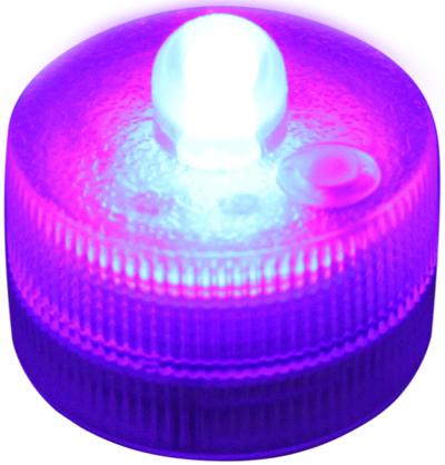 Submersible FloraLyte3™ Purple UV - L.E.D Lights